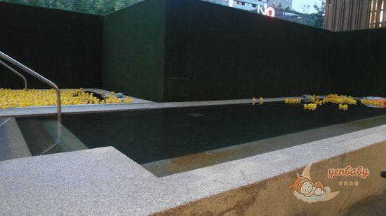 捷絲旅鴨鴨池